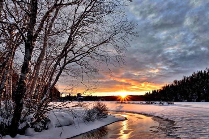 winter-landscape-2995987.jpg